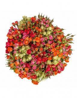 Bouquet of 51 spray roses | Flowers to women