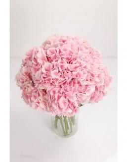 Bouquet of 51 pink hydrangeas | Flowers to women