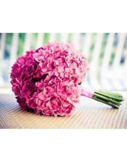 Bouquet of 15 pink hydrangeas