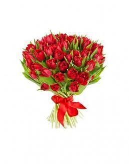 Bouquet of 51 red tulips | Flowers to women