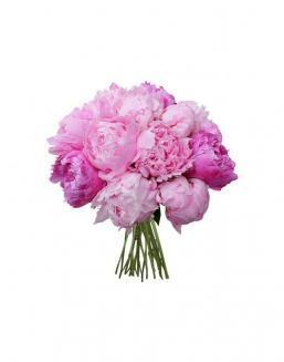 Bouquet of 15 pink peonies | Flowers to women