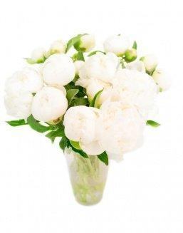 Bouquet of 15 white peonies