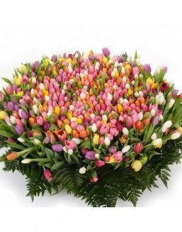 Mix bouquet 501 tulips | Flowers to women