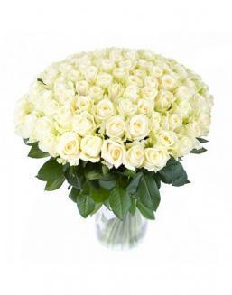 77 high elite white roses | Flowers to women