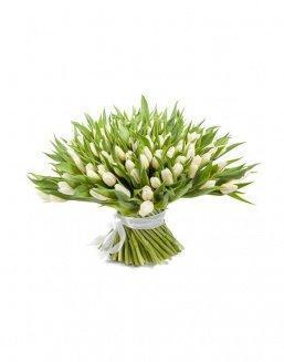 Bouquet 201 white tulips | Flowers to women