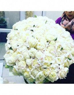 The dream embodiment a bouquet of 151 peonies | Flowers to women